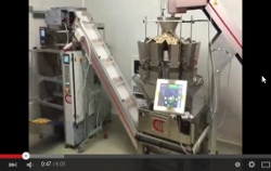 Automatic Weighing and Packaging Line for Frozen Mushrooms